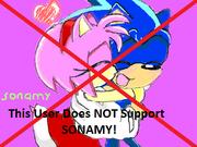 No SonAmy