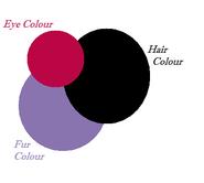 Neferet's Colour Chart