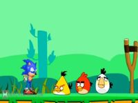 Angry Bird preview