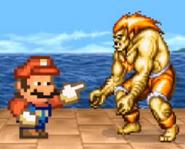 SFH Mario and Blanka