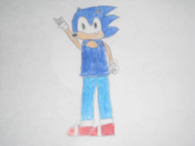 File:Ronnoc the Hedgehog.JPG