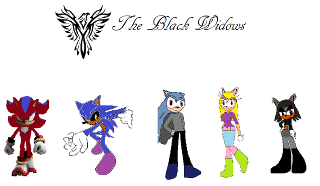 File:The Black Widows team.png