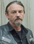 Chibs 705 Crop