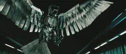 Balthazar's Eagle