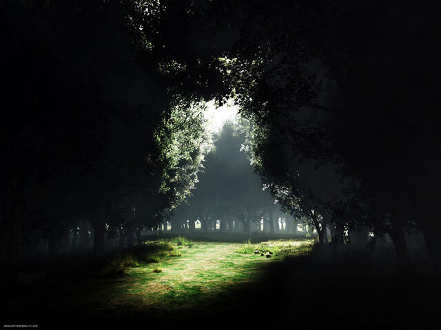 File:Dark-Forest-Wallpaper-10.jpg