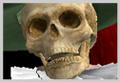 Thumbnail for version as of 20:15, November 16, 2011