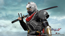 Black Ninja 11