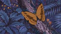 Soul Eater Episode 44 HD - Amazon butterfly 1