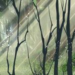Star Dou Forest Mug 2