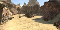 Noah's Desert