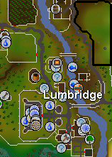 Lumbridge cattle field