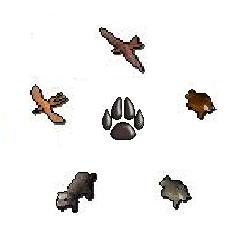 File:Hunter - Soulsplit.png