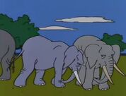 The Simpsons Hollywoodedge, Elephant Trumpeting PE024801 3
