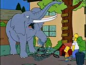 The Simpsons Hollywoodedge, Elephant Trumpeting PE024801