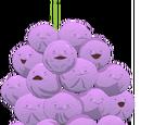 Memberberries