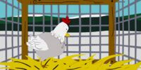 Chickenlover