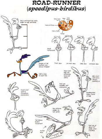 File:Road runner model sheet by guibor-d6b919x.png