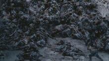 Spartacuss1230
