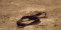 The Purple Ribbon