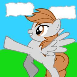 Roblox3dflash PonyIcon