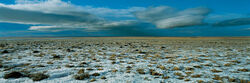 North european ice