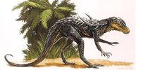 Pugiodorsus