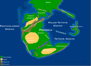 Pangaea (230 million years ago)