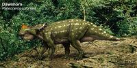 Spec Dinosauria: Cenoceratopsia