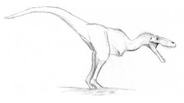 Errosaurusagressimus
