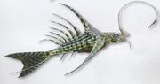 Stegoichthys ornatus