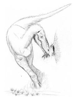 Naskalnodon