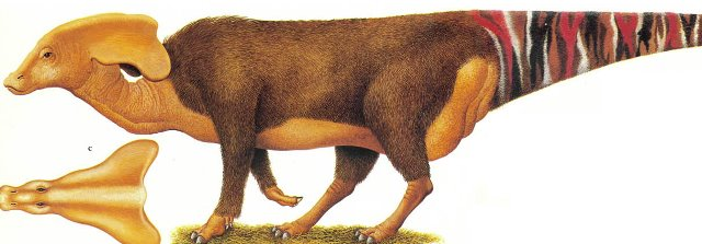 File:Rubusaurus petasus.jpg