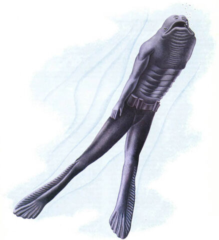 File:Aquamorph.jpg