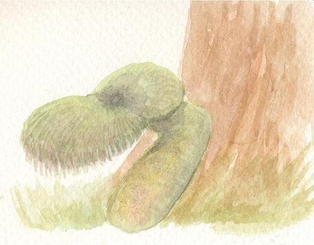 Green gnome by sphenacodon