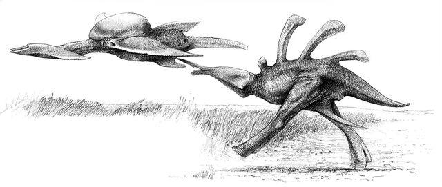 File:Rayback attacking Hammerheaded Veldtwing.jpg