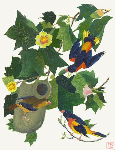 File:Bird.jpg