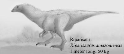 Riparisaur