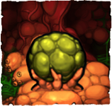 File:Worm egg.png