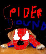 SpiderHound