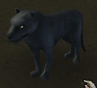 Plik:Panther.png
