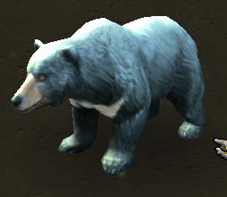 Plik:Moon Bear.png