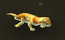 Bearded Dragon.png