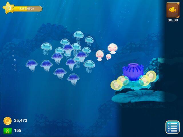 File:JellyfishAllOverThePlace.jpg