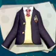 Top School Uniform