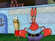 Mr. Krabs in Stuck in the Wringer-8