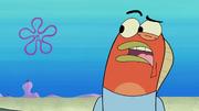Patrick's Coupon 046