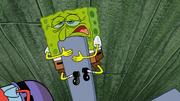 Plankton Retires 139