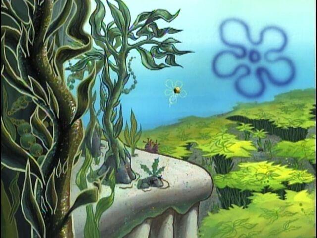File:Club SpongeBob 04.jpg