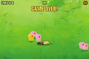 Capture Craze Game Over