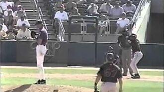 Baseball Ball Hit a Bird 1445206973860